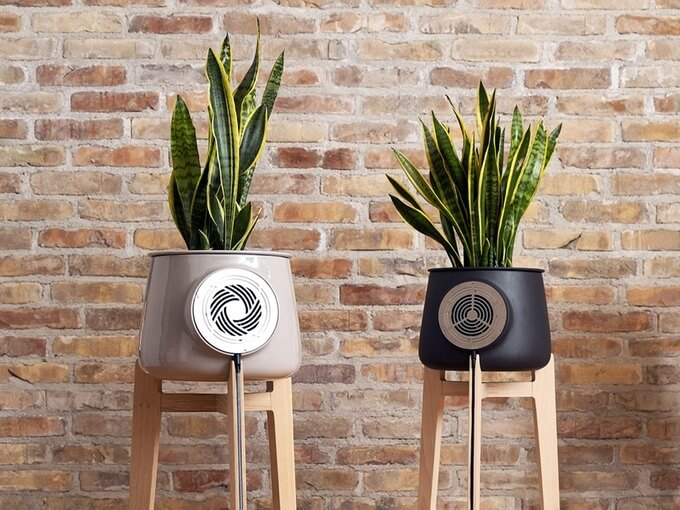 Check Out Clairy: Your Choice for Smart and Natural Air Purifier