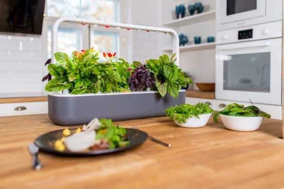 smart garden