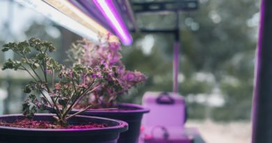 Smart Farming: Monitoring Techniques in Indoor Grow Environments