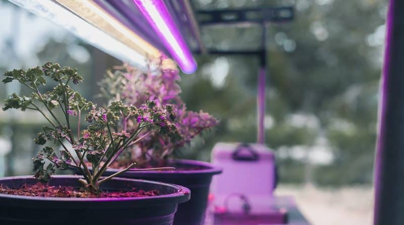 Smart Farming: Smart Monitoring Techniques in Indoor Grow Environments
