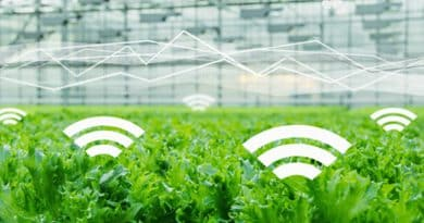 IoT in Agriculture: 3 Smart Farming Solutions Help Farmers Have Real-time Monitoring
