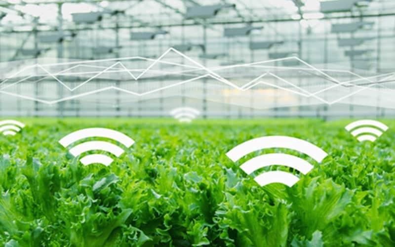smart farming solutions