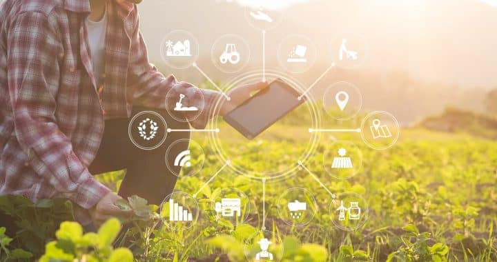 Agriculture,Technology,Farmer,Man,Using,Tablet,Computer,Analysis,Data,And
